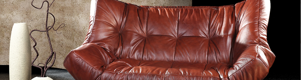 Leather Cleaning in Vancouver by GreenWorks Carpet Care